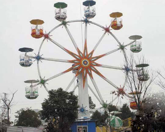 backyard ferris wheel for sale