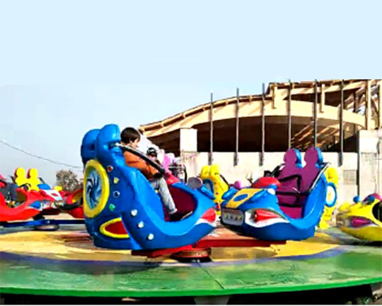 cost of amusement park rides