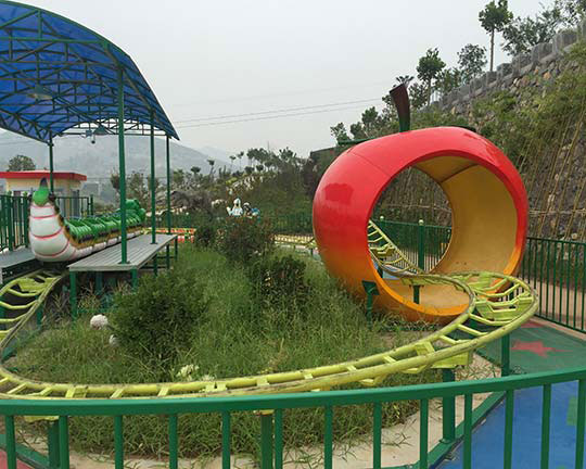 roller coaster ride for sale