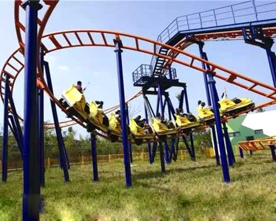 top and professional family roller coaster manufacturer and supplier