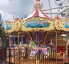 amusement park carousel rides for sale in Kazakhstan